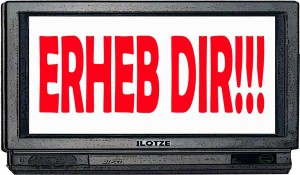 ERHEB_DIR_TV