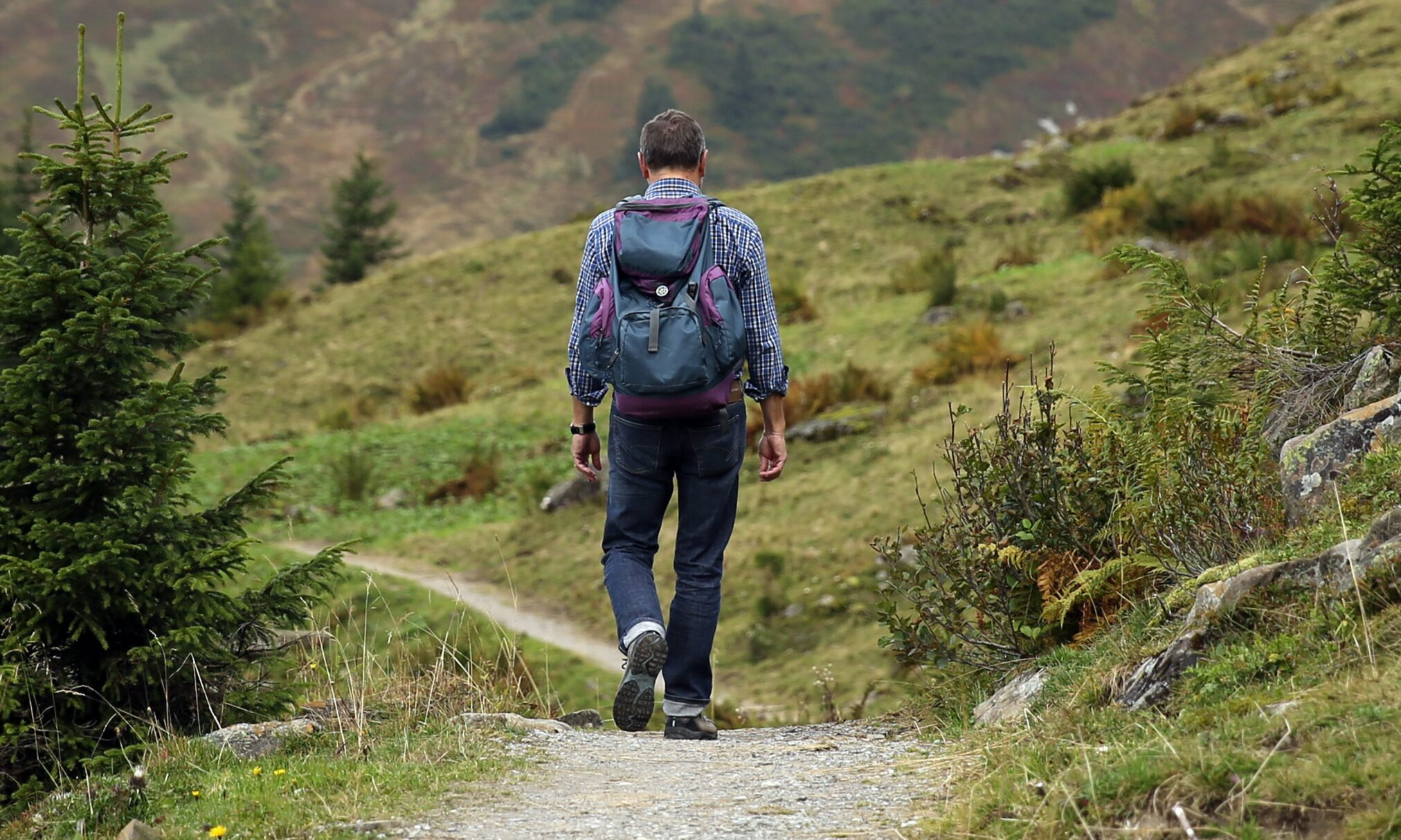 mountaineering, man, trail