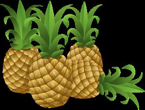 Abb.: Pixabay, Public Domain